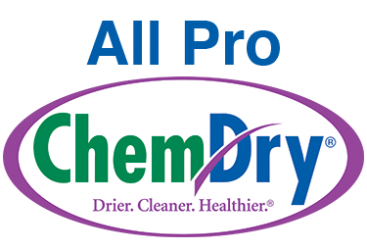 All Pro Chem-Dry